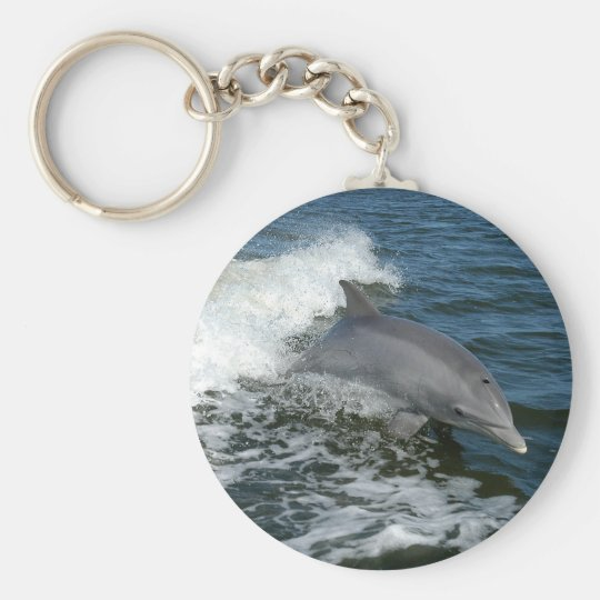 bottlenose dolphin photo keychain