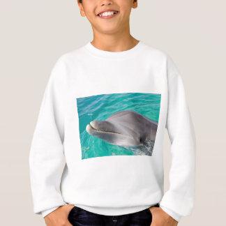 bottlenose dolphin photo sweatshirt