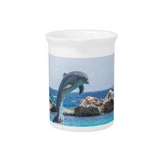 Bottlenose Dolphin Pitcher