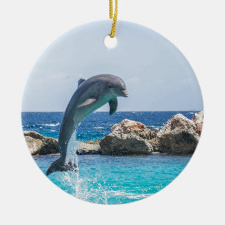 Bottlenose Dolphin Round Ceramic Decoration