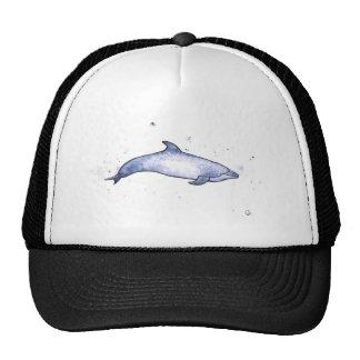Bottlenose dolphin sea illustration cap