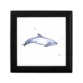 Bottlenose dolphin sea illustration gift box