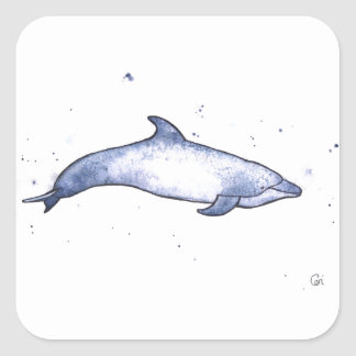 Bottlenose dolphin sea illustration square sticker