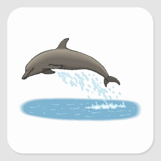 Bottlenose Dolphin Square Sticker