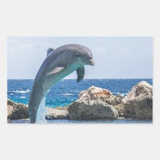 Bottlenose Dolphin Rectangular Sticker
