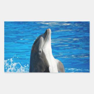Bottlenose Dolphin Rectangular Stickers