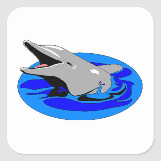 Bottlenose Dolphin Square Stickers