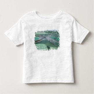 Bottlenose Dolphin Tursiops truncatus), 3 Toddler T-Shirt
