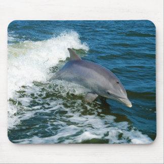 Bottlenose Dolphin Tursiops Truncatus Mouse Pad