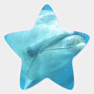 Bottlenose Dolphin Underwater Star Sticker