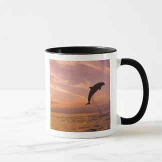 Bottlenose Dolphins Tursiops truncatus) 10 Mug