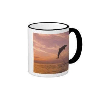 Bottlenose Dolphins Tursiops truncatus) 10 Ringer Mug