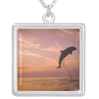 Bottlenose Dolphins Tursiops truncatus) 10 Square Pendant Necklace