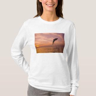 Bottlenose Dolphins Tursiops truncatus) 10 T-Shirt