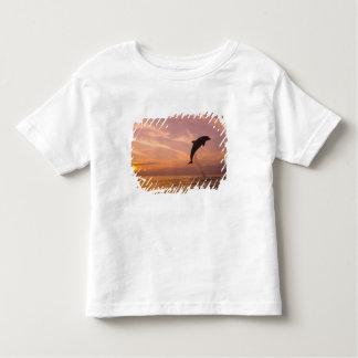 Bottlenose Dolphins Tursiops truncatus) 10 Toddler T-Shirt