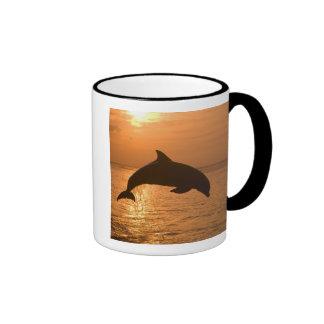 Bottlenose Dolphins Tursiops truncatus) 11 Coffee Mug