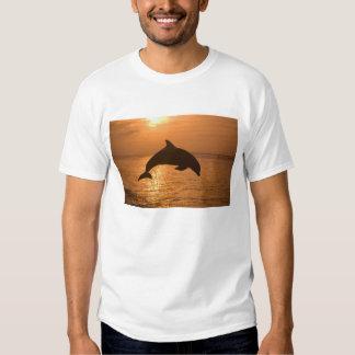 Bottlenose Dolphins Tursiops truncatus) 11 T Shirt