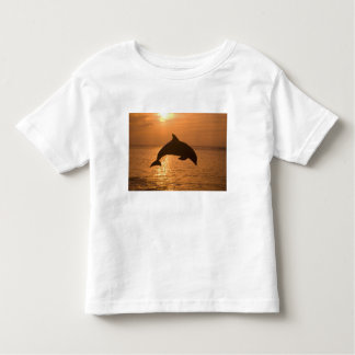 Bottlenose Dolphins Tursiops truncatus) 11 Toddler T-Shirt