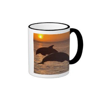 Bottlenose Dolphins Tursiops truncatus) 12 Coffee Mug