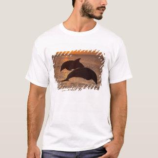 Bottlenose Dolphins Tursiops truncatus) 12 T-Shirt