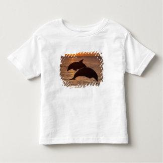 Bottlenose Dolphins Tursiops truncatus) 12 Toddler T-Shirt