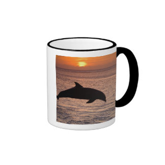 Bottlenose Dolphins Tursiops truncatus) 13 Ringer Mug