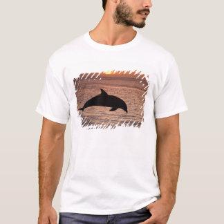 Bottlenose Dolphins Tursiops truncatus) 13 T-Shirt