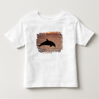 Bottlenose Dolphins Tursiops truncatus) 13 Toddler T-Shirt