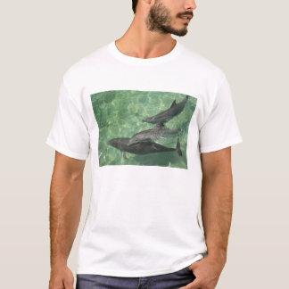Bottlenose Dolphins Tursiops truncatus) 16 T-Shirt
