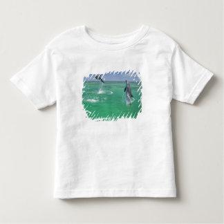Bottlenose Dolphins Tursiops truncatus) 17 Toddler T-Shirt