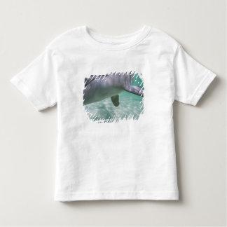 Bottlenose Dolphins Tursiops truncatus) 21 Toddler T-Shirt