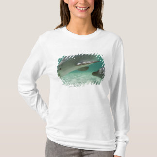 Bottlenose Dolphins Tursiops truncatus) 22 T-Shirt