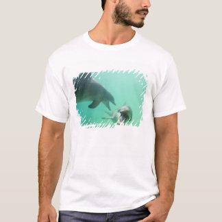 Bottlenose Dolphins Tursiops truncatus) 27 T-Shirt
