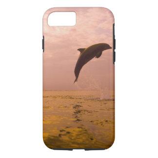 Bottlenose Dolphins (Tursiops truncatus) 2 iPhone 8/7 Case