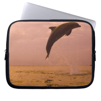 Bottlenose Dolphins (Tursiops truncatus) 2 Laptop Sleeve