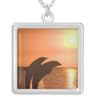 Bottlenose Dolphins Tursiops truncatus) 2 Silver Plated Necklace
