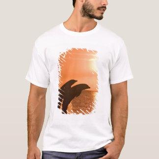 Bottlenose Dolphins Tursiops truncatus) 2 T-Shirt