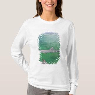 Bottlenose Dolphins Tursiops truncatus) 3 T-Shirt