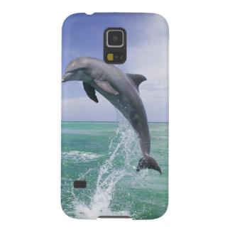 Bottlenose Dolphins Tursiops truncatus) 4 Galaxy S5 Cover