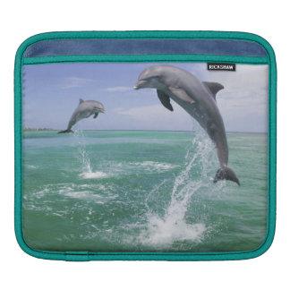 Bottlenose Dolphins Tursiops truncatus) 4 iPad Sleeve