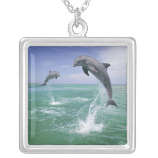 Bottlenose Dolphins Tursiops truncatus) 4 Silver Plated Necklace