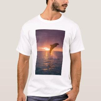 Bottlenose Dolphins Tursiops truncatus) 9 T-Shirt