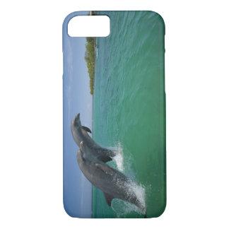Bottlenose Dolphins (Tursiops truncatus) iPhone 8/7 Case