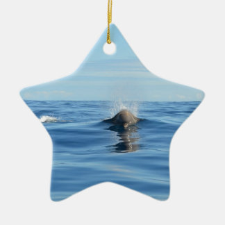 Bottlenose Whale Christmas Ornament