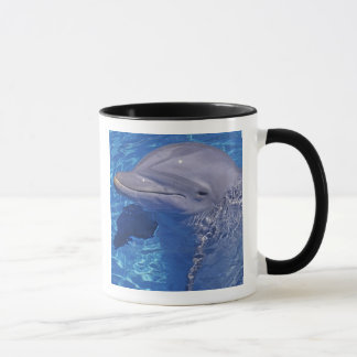 Bottlenosed Dolphin, Tursiops Truncatus Mug