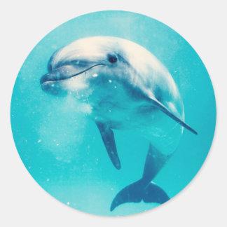 Bottlenosed Dolphin Underwater Classic Round Sticker