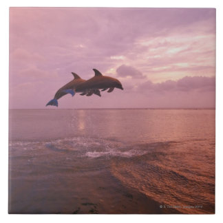 Bottlenosed Dolphins Jumping at Sunset Large Square Tile