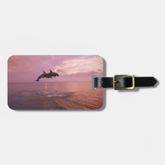 Bottlenosed Dolphins Jumping at Sunset Luggage Tag