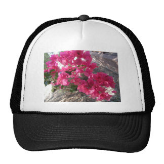 BOUGAINVILLAS TRUCKER HATS