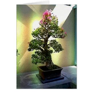 Bougainvillea Bonsai Tree Greeting Card